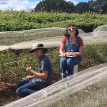 Anna Burton and Cayd Erickson measure stem calipers 2017
