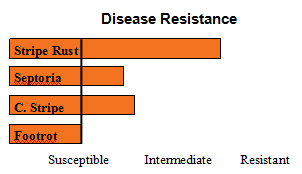 ORCF 101 - Soft White Winter Wheat - Disease Resistance